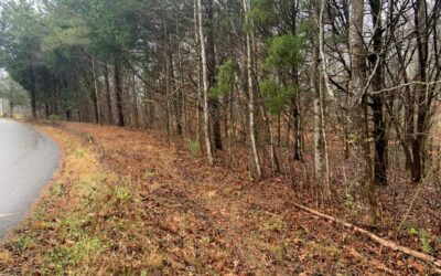 00 Hickey Road Silver Point, TN 38582